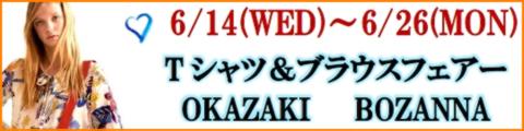 BOZANNA OKAZAKI ~ Tシャツ&ブラウスフェアー